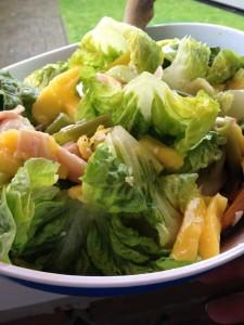 mango-kip salade